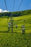 Sky lift above green vineyard, Ruedesheim Stock Image