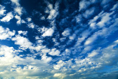 Sky. Light sky in summer weather Royalty Free Stock Photography