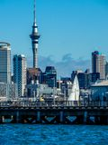 Sky line with Sky Tower, Auckland, New Zealand. Sky line with Sky Tower, against a blue sky on a clear day Royalty Free Stock Photography