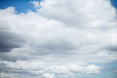 Sky with lush white clouds. The sky with lush white clouds and a flying seagull Royalty Free Stock Images