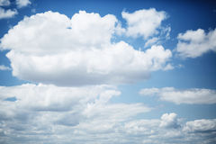 Sky with lush white clouds. The sky with lush white clouds and a flying seagull Stock Photo