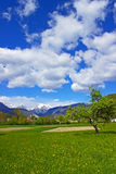 Sky and Meadow Royalty Free Stock Images