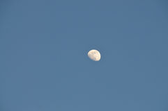 Sky and moon Stock Photography