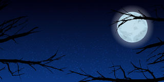 Sky moon trees night. Illustration. Use wallpaper for, the website, smart phone, tablet PC, printing etc Stock Photo