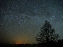 Night sky and milky way stars, meteor Cassiopeia and Cygnus constellation over swamp stock photo