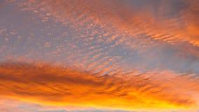 The Sky in Orange. Fiery orange colorful sunset sky Royalty Free Stock Image
