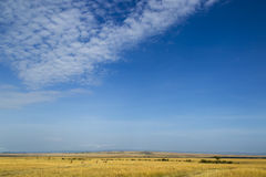Sky over african savanna Royalty Free Stock Images