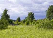 Sky over the lawn and forest. background, nature Royalty Free Stock Image
