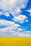 Sky over the plain Royalty Free Stock Images