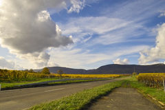 Sky over wineyards. Road in the wineyards under bright blue sky with clouds, Germany Stock Photos