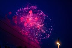 The sky is with pink fireworks, wires and a lamp post. The sky is with fireworks, wires and a lamp post Royalty Free Stock Images
