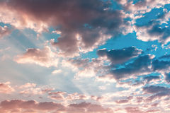 Sky. Pink red and blue light in twilight sky Royalty Free Stock Photos