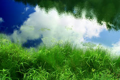 Sky and Pond Royalty Free Stock Images