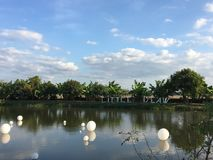 Pond with sky Stock Photography