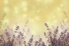 Sky, Purple, Lavender, Lilac stock images