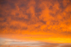 Sky with red clouds Royalty Free Stock Image