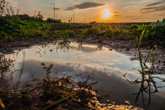 Sky reflected in a puddle of water in a field at sunset Stock Images