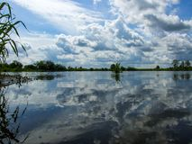 Sky reflected in water of Bug river in Poland. Water surface reflects the cloudy sky over the the bed of Bug river in masovia region in Poland. Water plants on royalty free stock photos