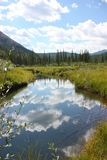 Sky Reflecting on Beaver Pond Stock Photo