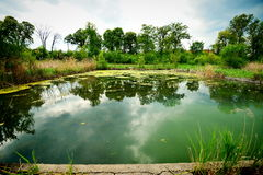 Sky reflection in deserted pool remains from the Someseni Baths near Cluj Stock Images