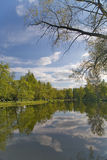 Sky Reflection In Pond Royalty Free Stock Photos
