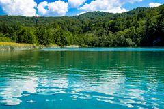 Reflexion in the Plitvice Lakes in Croatia Royalty Free Stock Image