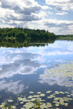 Sky reflexion in a water smooth surface. Of lake with growing water-lilies Stock Photo