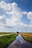 Sky. River. padi field Royalty Free Stock Photo