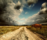 The sky and road in a field Stock Image
