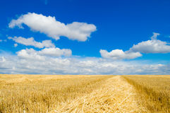 Sky and rural Stock Photography