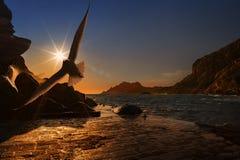 Sky, Sea, Sunrise, Sunset royalty free stock images
