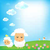 Sky and sheep with grass wind mill background 002 Stock Image