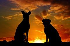 Sky, Silhouette, Sunrise, Sunset Royalty Free Stock Image