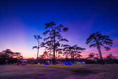 Sky and stars at night with camping Stock Photo