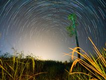 Star trail at the field. Sky and stars stock photography