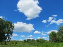 Sky and steppe. White clouds float in the blue August sky Royalty Free Stock Images
