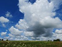 Sky and steppe. White clouds float in the blue August sky Stock Photos