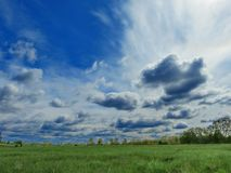 Sky and steppe. White clouds float in the blue August sky Stock Photo