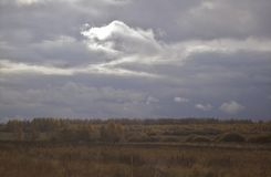 Sky with storm clouds. Over the forest Royalty Free Stock Images