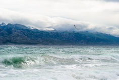 Sky and stormy waves in the sea Stock Photography