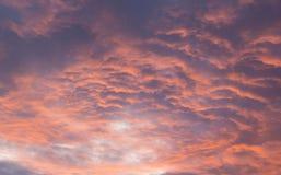 Sky in sunrice Stock Photo