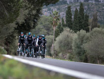 Sky Team Riders  cycle during their training camp in the island of Mallorca. Britains cycling team Sky Team rolls near the village of Alcudia during their pre Royalty Free Stock Photo
