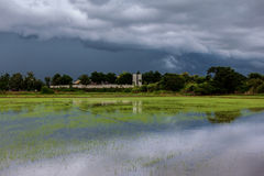 Sky terrible clouds clumping rain began to fall late in the rice paddies. On the refreshing scent of icy rain Stock Photography