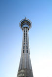 Sky Tower Auckland Royalty Free Stock Photo