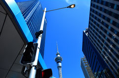 Sky Tower in Auckland New Zealand Stock Image