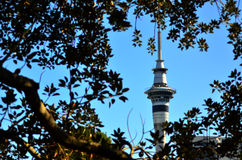 Sky Tower in Auckland New Zealand Royalty Free Stock Photos