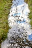 Sky and tree branches reflection in water Royalty Free Stock Photography