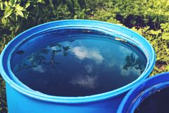 Sky and tree reflection in the water barrel. Vintage look Stock Image