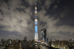 Sky tree tokyo tower at night. The tokyo sky tree tower, closeup at night Stock Photography