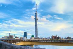 The Sky Tree Stock Photography